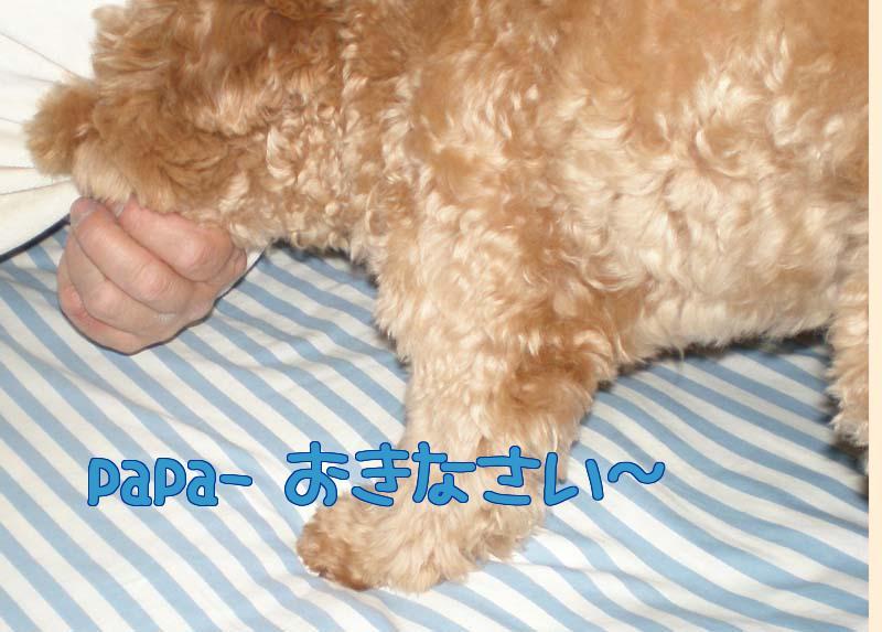 Okinasai_2